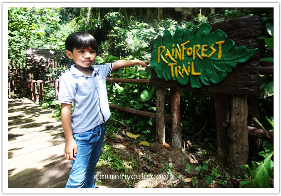 8285321919 06df0b0062 z Bercuti di lost world of tambun 2 | Rainforest Trail