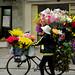 Mobile Flower Shop
