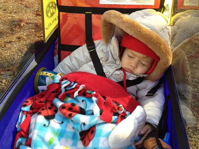 Bike trailer nap