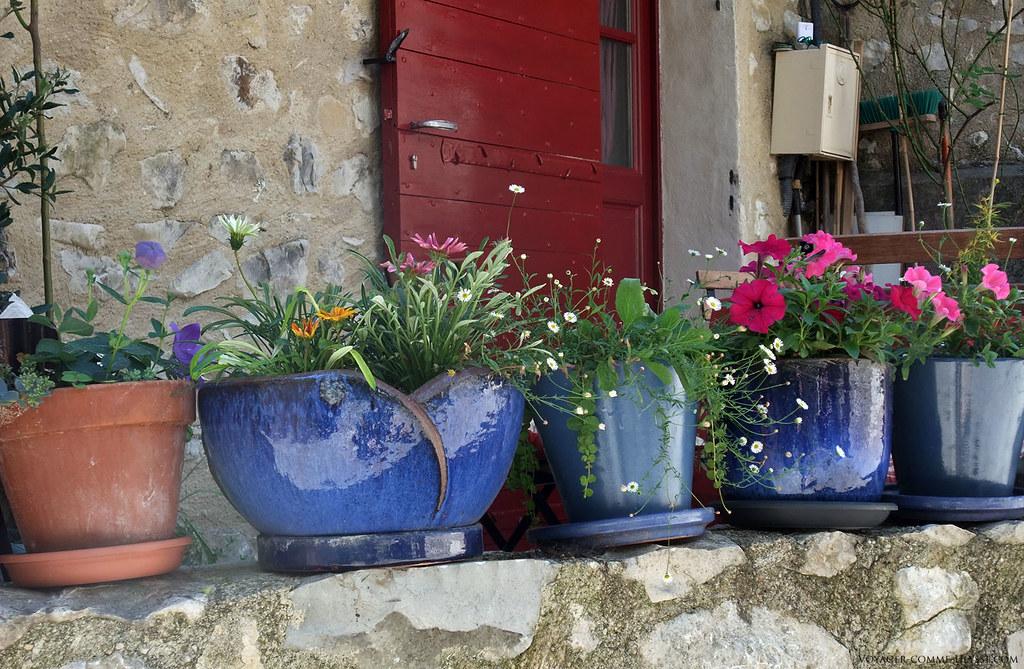 Jolis pots de fleurs devant une des maisons de St Léger.