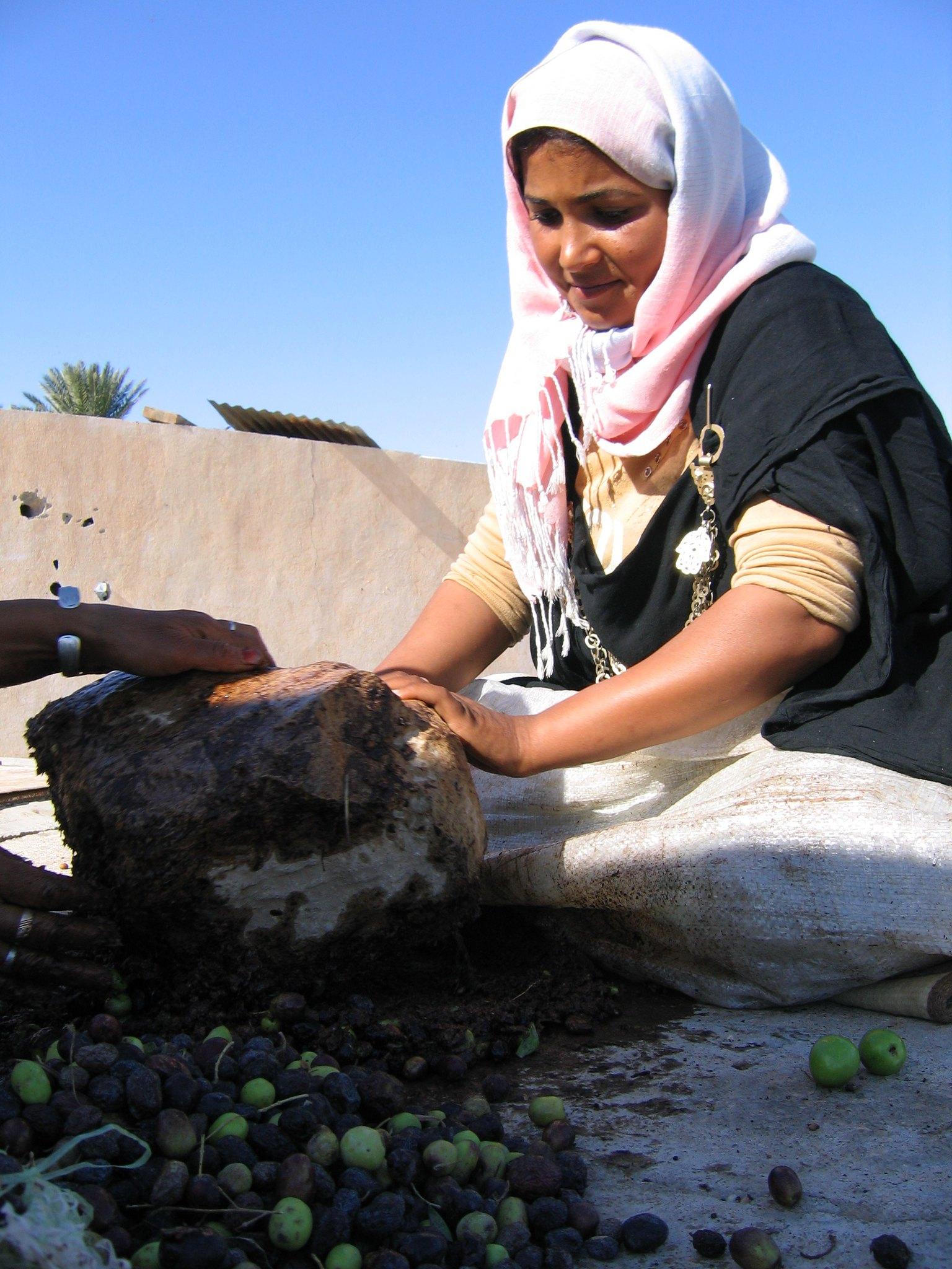Oasis historique de Gafsa, Tunisie
