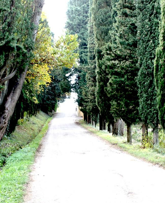 fattoria-lavacchio-smarbox-italia-13