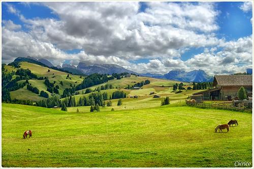 Alpe di Siusi, Seiser Alm (2000 mt.) by cicrico