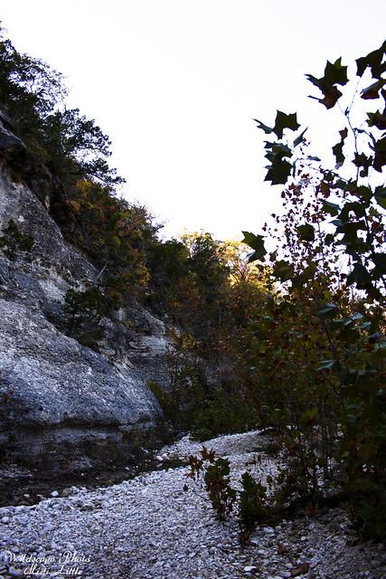 monkeyrock