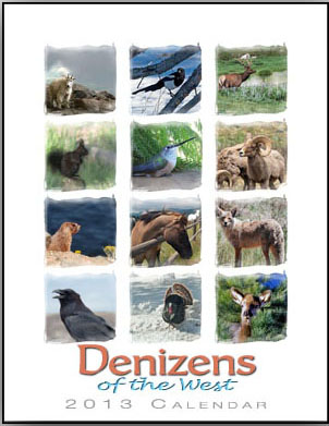 Denizens of the West Colorado Animal Calendar