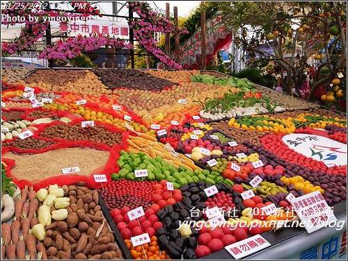 台中新社_2012新社花海節20121125_R0010520