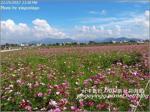 台中新社_2012新社花海節20121125_R0010579