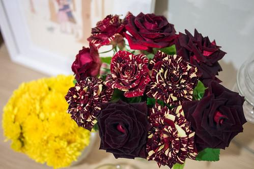 abracadabra roses
