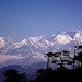 The Mighty Himalayas.jpg