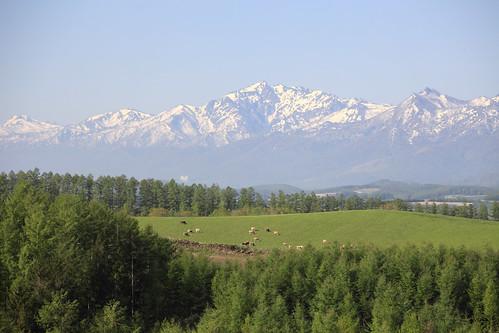 芦別岳遠景
