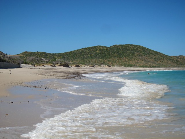 Cabo Pulmo National Park Snorkeling Tour