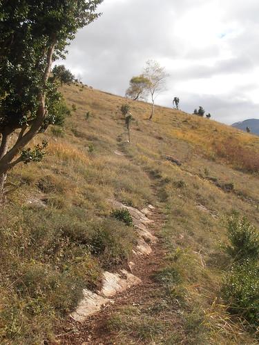 Sentier des Carrières 120