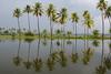 Keralan Stormy sky