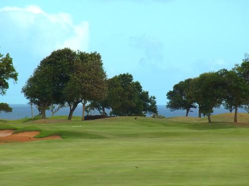 Kauai Lagoon Golf Club 413b