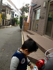 朝散歩 (2012/11/5)