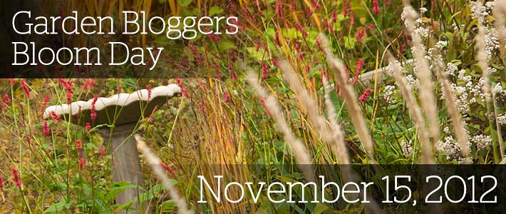 GBBD November 2012 copy