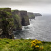Cliffs of Moher, par Franck Vervial by Franck Vervial
