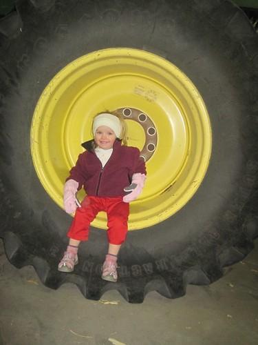 Baby in a Wheel
