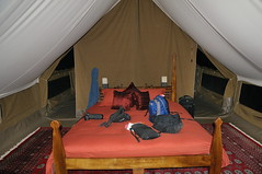 Interior of camp tent at Alamana private camp in Tanzania-01 1-14-12