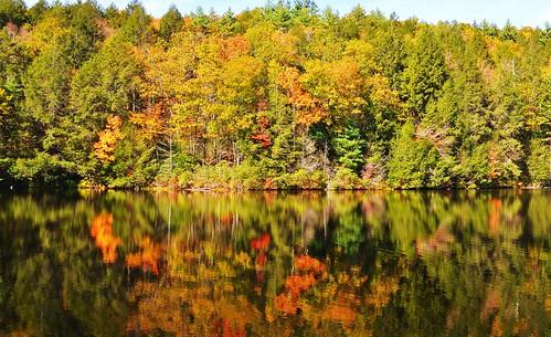statepark autumn usa connecticut bigelowhollow stateforest nipmuck 06076 johnjmurphyiii
