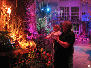 The Enchanted Forest in the U.S. Botanic Garden holiday exhibit.