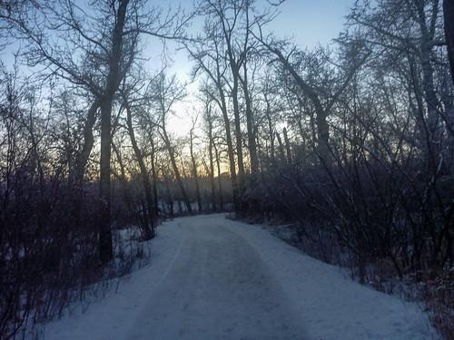 Path at Dusk @ 2200kmn