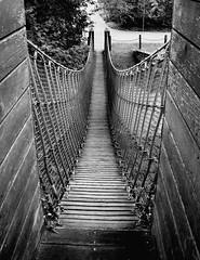 Fußgängerbrücke / Suspension bridge (Explored #200)