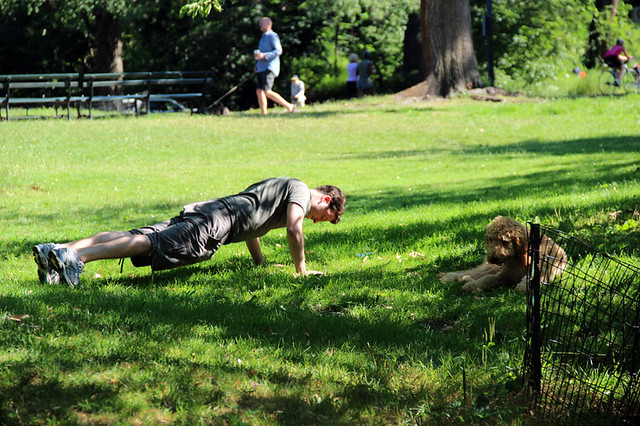 IMG_3926pushupsincentralpark
