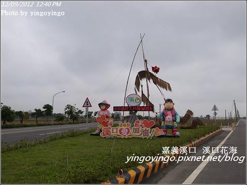 嘉義溪口_溪口花海20121209_R0010827