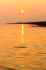 Golden Glory.. The rising Sun.
