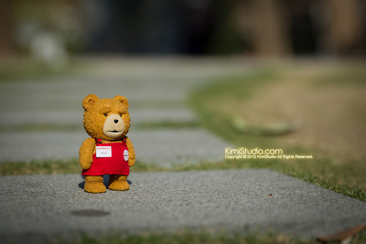 2012.11.06 Teddy-002