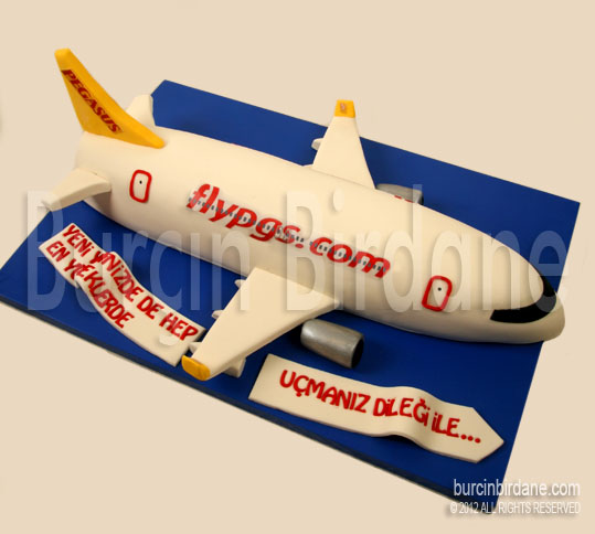 Pegasus Ucak Pasta
