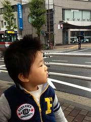 朝散歩 (2012/11/6)