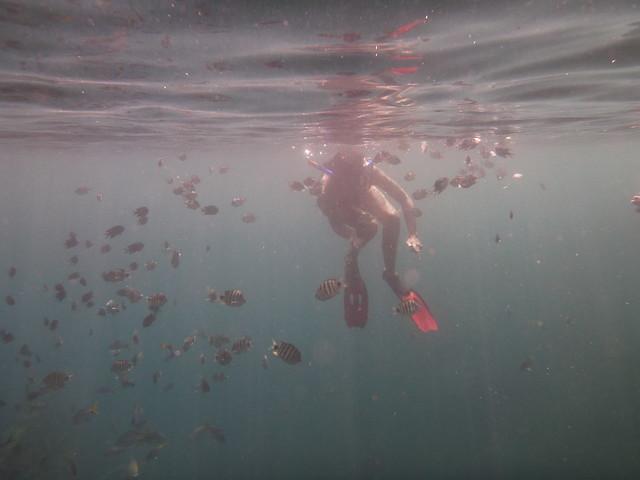 附近除了我們只有另外一艘一對法國情侶包的船, 照片中的是即使在水中也優雅的法國女生
