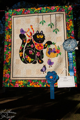 "Cypress Creek Quilters Guild - November 2012 - Quilt Show - ""A Garden of Quilting Delights"""
