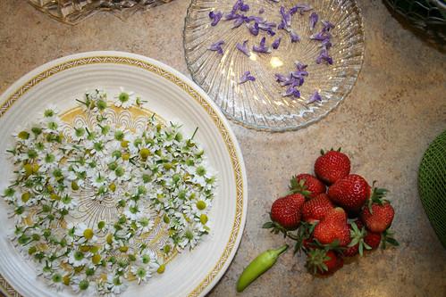 Spring delicacies by Permavultur