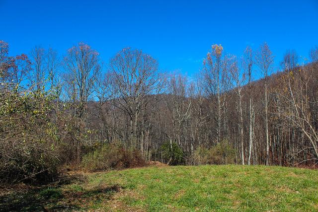 Buckhorn Gap Pisgah National Forest North Carolina