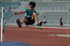 sprint(0.0), modern pentathlon(0.0), 110 metres hurdles(0.0), championship(0.0), obstacle race(0.0), 100 metres hurdles(0.0), running(0.0), 4 㗠100 metres relay(0.0), hurdle(0.0), 800 metres(0.0), physical exercise(0.0), hurdling(0.0), athletics(1.0), track and field athletics(1.0), sports(1.0), high jump(1.0), heptathlon(1.0), person(1.0), athlete(1.0),