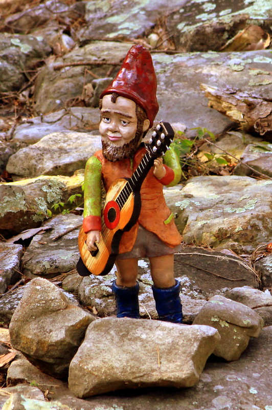 Rock City's Gnome Valley #1: Musician