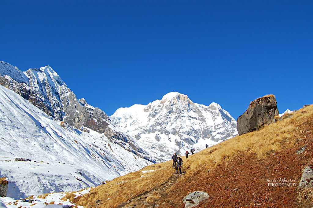 Machhapuchhare Base Camp 6