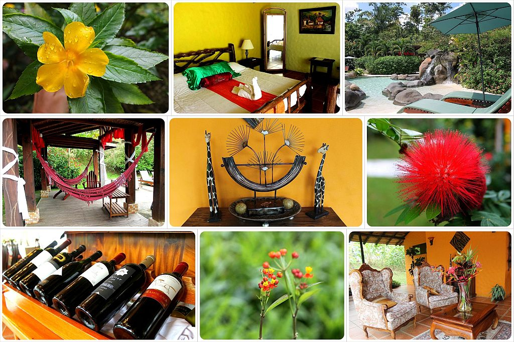 Mountain Paradise Hotel in Arenal Costa Rica flowers