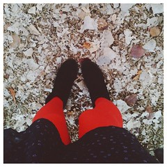 red tights are as ubiquitous in my wardrobe as jeans are in others'. #redtights #latergram #shoemint #vscocam