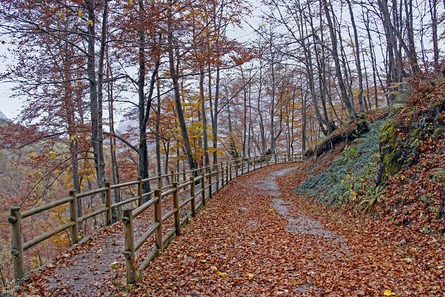 02 Un paseo por el otoño