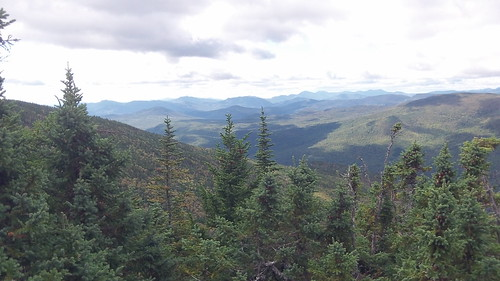 View from Wildcat