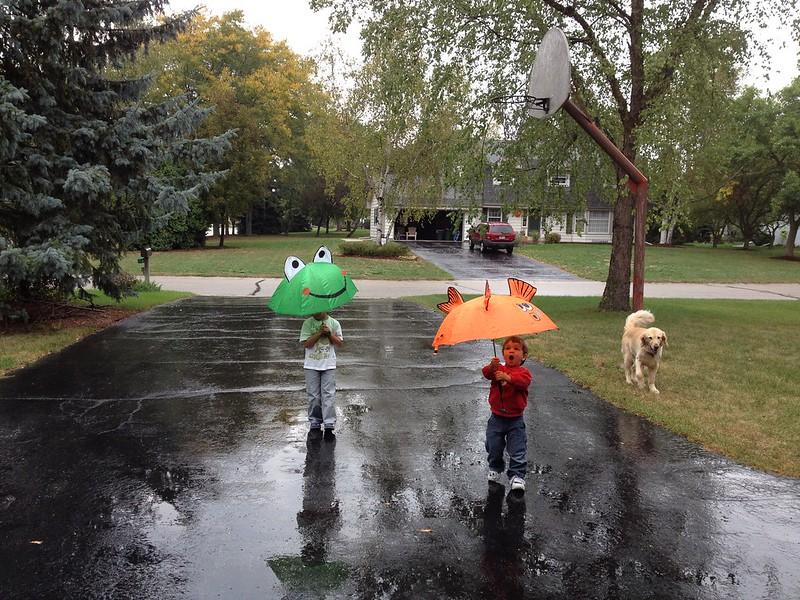 261 rain fun