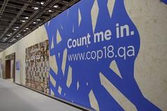 (照片取自卡達COP18官方網站)