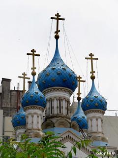 Moscovita porteña