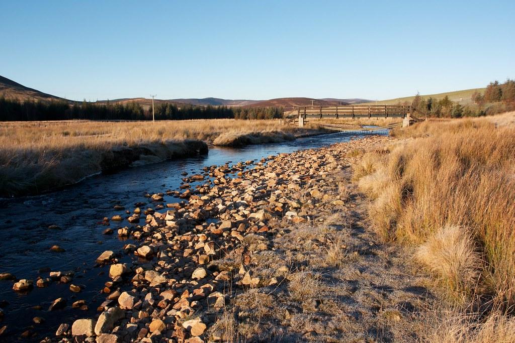 River Livet