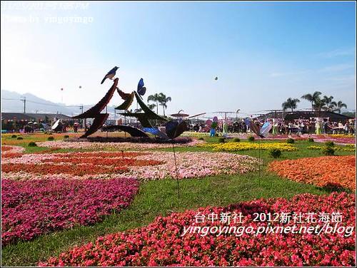 台中新社_2012新社花海節20121125_R0010541