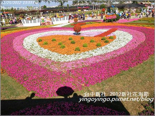 台中新社_2012新社花海節20121125_R0010567